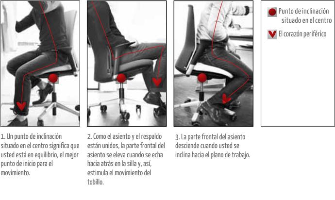 H g y la ergonom a din mica bunno estudio mobiliario for Ergonomia en la oficina